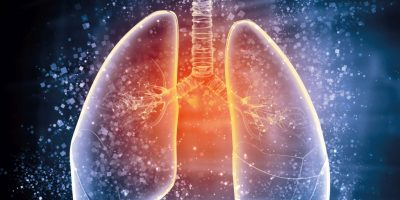 Schematische Darstellung der menschlichen Lunge mit den verschiedenen Elementen auf einem farbigen Hintergrund. Collage.