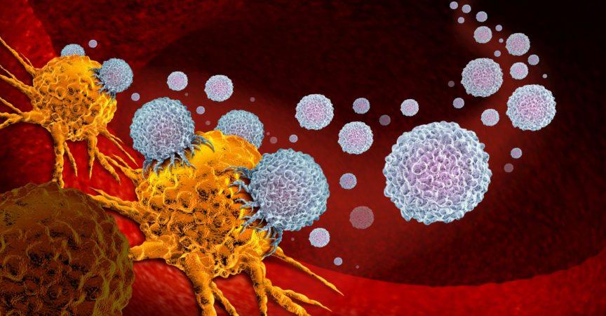 Krebsimpfstoff-Therapie