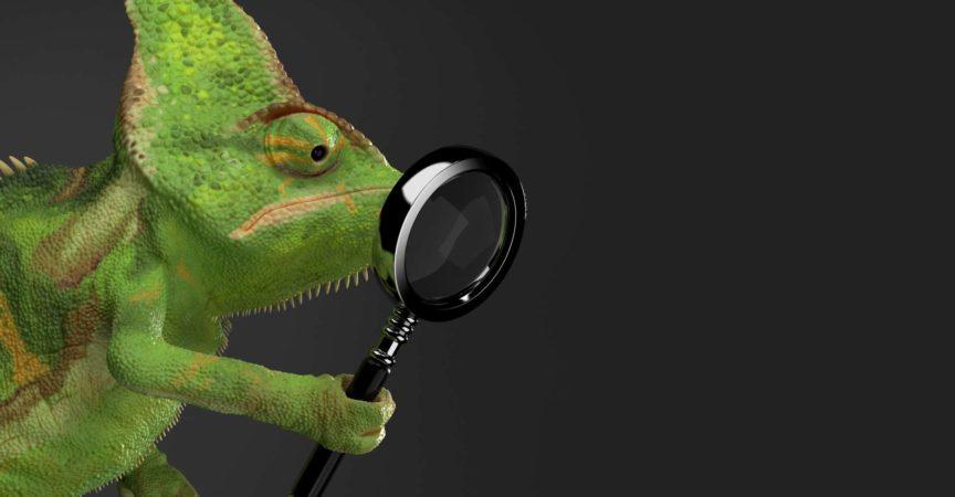 Chamäleon, das Vergrößerungsglas hält, das auf grauem Hintergrund lokalisiert wird. 3D-Illustration