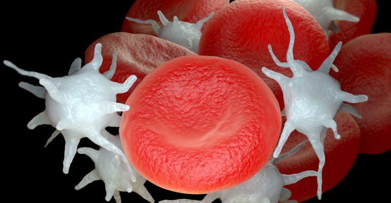 Rote Blutkörperchen und aktivierte Blutplättchen oder Thrombozyten. 3D-Illustration
