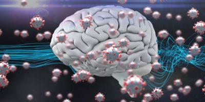 Blaue Faser und menschliches 3D-Gehirn mit schwimmenden Coronavirus-covid19-Zellen