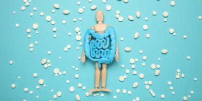 Gesunder Darm in Händen der menschlichen Figur. Verdauungsprobleme, Koliken, Dysbakteriose. Verdauungsmedizin, probiotische Pillen.