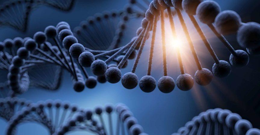 DNA, Adenin, Cytosin, Guanin, Labor, Zusammenfassung, Hintergründe, Biochemie, Biologie, Biotechnologie