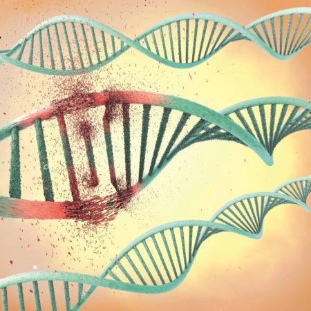 Abbildung eines beschädigten Ribonukleinsäure- oder DNA-Strangs
