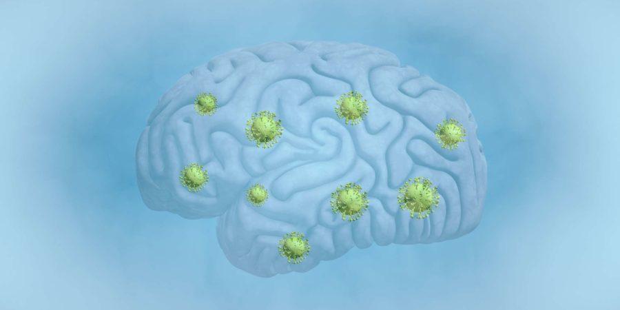 Gehirn, Tumor, COVID-19, Krebs - Krankheit, biomedizinische Illustration