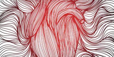 Vektorillustration eines gezeichneten aus vielen roten und schwarzen Linien anatomisches menschliches Herz auf weißem Hintergrund