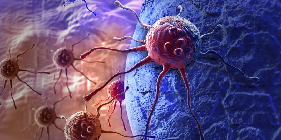 Krebszelle in 3D-Software hergestellt