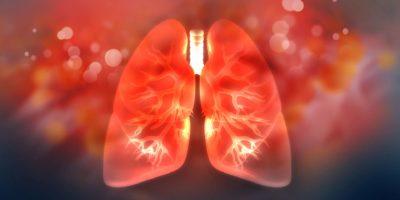 Menschliche Lunge auf wissenschaftlichem Hintergrund