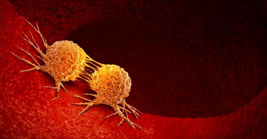 Krebszellteilung
