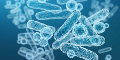 Nahaufnahme von 3D mikroskopisch kleinen blauen Bakterien