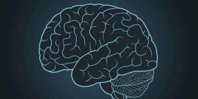 Schematische Darstellung des menschlichen Gehirns auf blauem Hintergrund