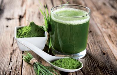 Zur Supplementierung von Omega-3-Fettsäuren wie DHA erfreuen sich Mikroalgen-Produkte bei Veganern zunehmender Beliebtheit.