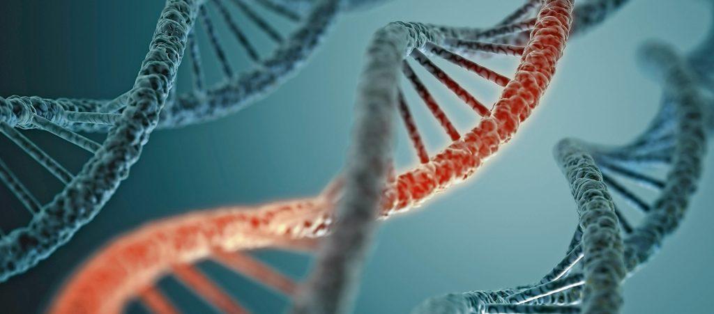 Epigenetik: Belastende Lebensereignisse können Risikogene aktivieren.