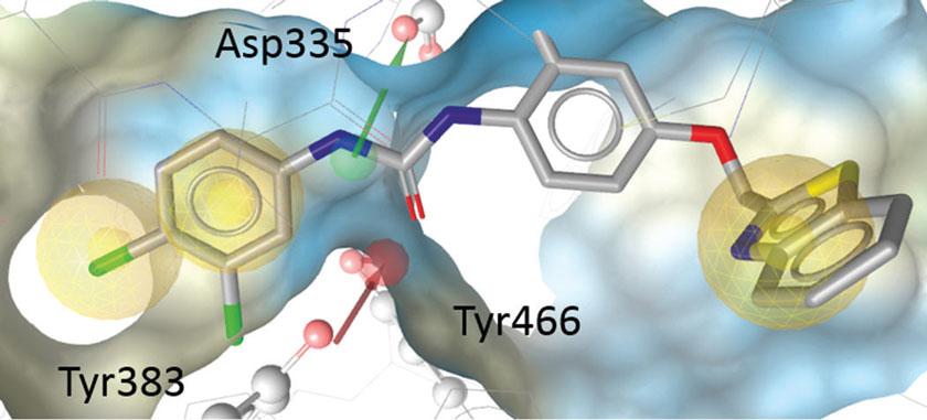 """Wirkstoff """"I-12"""": Die 3D-Struktur im sEH-Pharmakophormodell."""