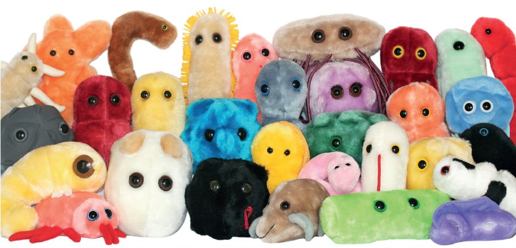 Foto: GIANTmicrobes Inc