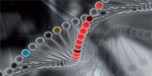 DNA, erblich