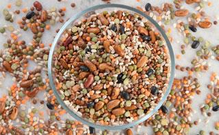 Weizen, Roggen und Hülsenfrüchte zählen u.a. zu den FODMAPs.