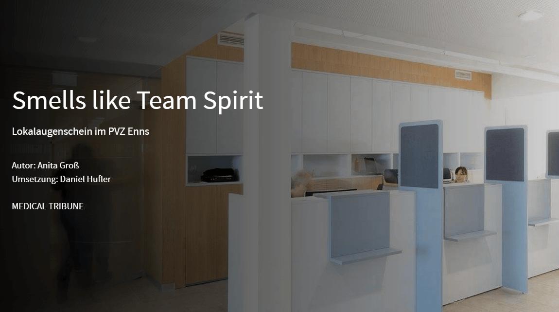 smell_like_team_spirit